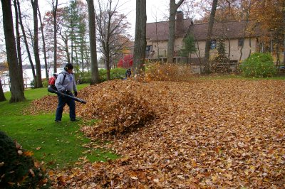 Leaf Pickup In Green Ohio 44685 Fall Leaves Collection